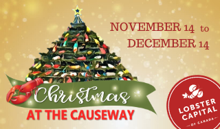 Christmas at the Causeway